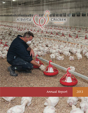 2013-report-cover