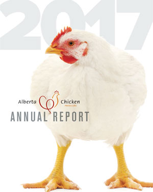 2017-report-cover