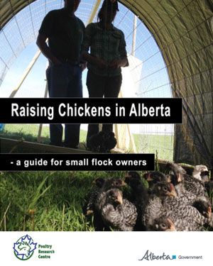 Raising Chickens in Alberta